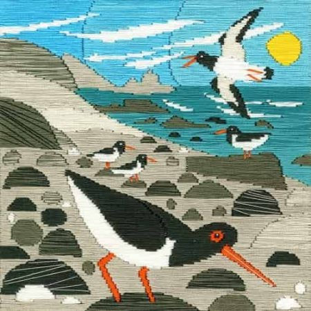 Bothy Threads Long Stitch Kit - Silken Scenes - Oystercatchers, Bird