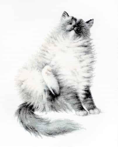Luca-S Cross Stitch Kit - Micky, Cat