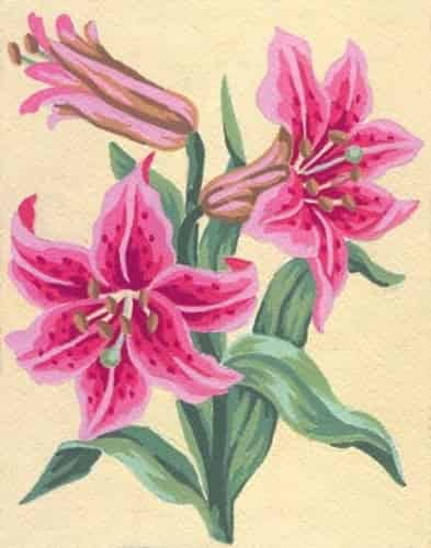 Grafitec Printed Needlepoint Canvas - Lilies