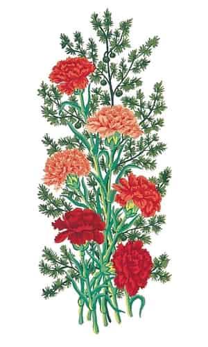 Grafitec Printed Tapestry Canvas - Carnations
