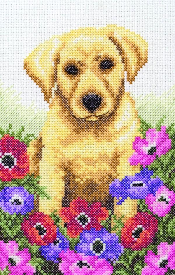 Anchor Cross Stitch Kit - Puppy PCE759, Dog, Flowers