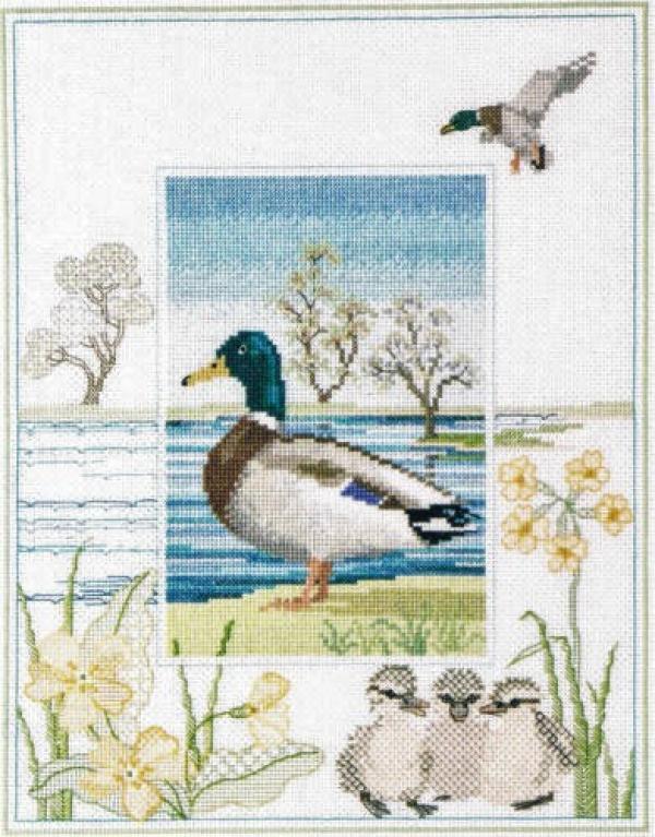 Derwentwater Designs Cross Stitch Kit - Wildlife - Mallard