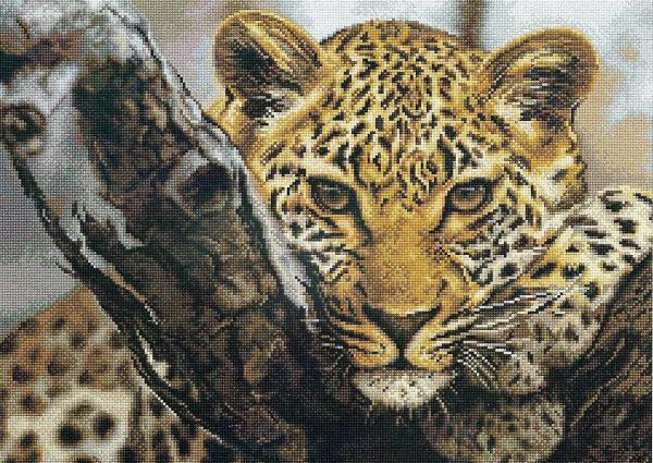 Luca S Cross Stitch Kit - Leopard B525