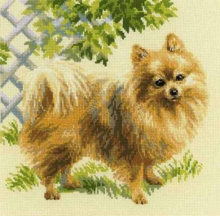 Riolis Cross Stitch Kit - Pomernanian, Dog