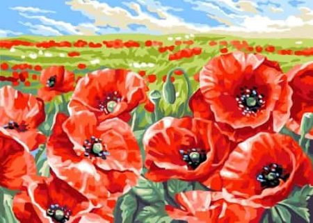 Grafitec Printed Tapestry Needlepoint Canvas - Red Poppy Field