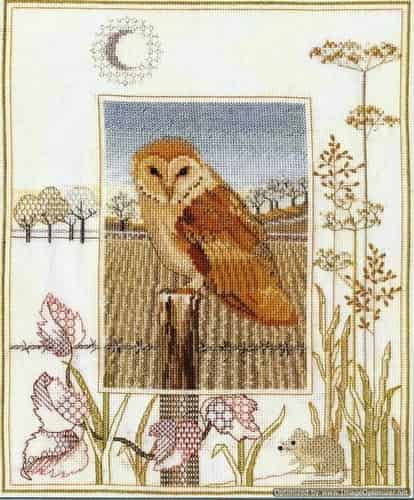 Derwentwater Designs Cross Stitch Kit - Barn Owl