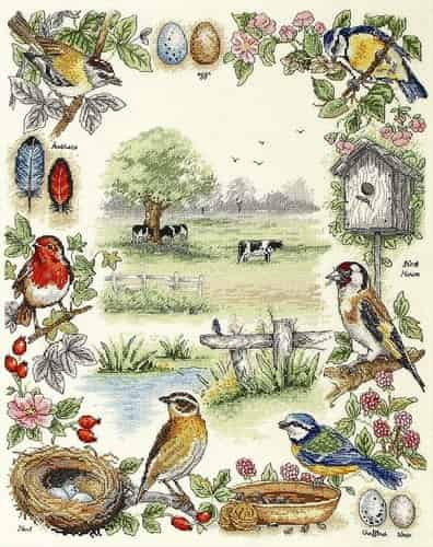 Anchor Cross Stitch Kit - Birds Sampler PSC52