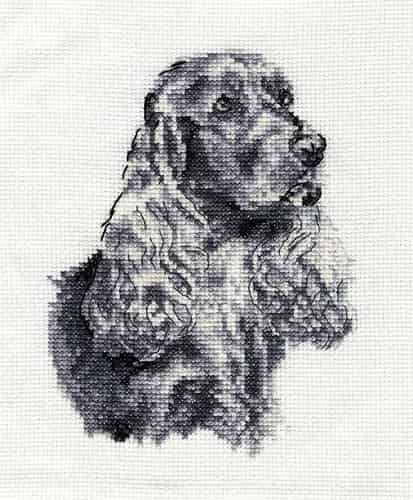 DMC Cross Stitch Kit - Cocker Spaniel BK1686