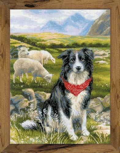 Riolis Cross Stitch Kit - Border Collie and Sheep 1767