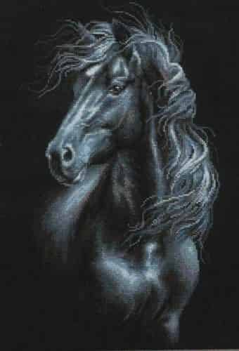 Riolis Cross Stitch Kit - Breeze Through Mane, Horse