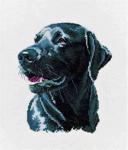 Heritage Crafts Cross Stitch Kit - Chester - Black Labrador