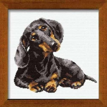 Riolis Cross Stitch Kit - Dachshund
