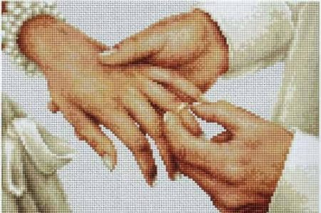 Luca S Cross Stitch Kit - Forever B2276