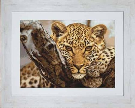 Luca S Needlepoint Tapestry Kit - Leopard G525