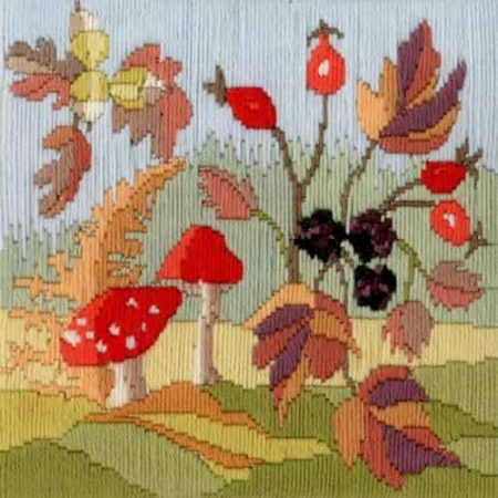 Derwentwater Designs Long Stitch Kit - Seasons, Autumn Flowers LSS03