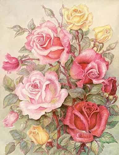 Grafitec Printed Tapestry Needlepoint Canvas - Romantic Roses