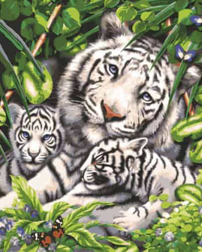 Grafitec Printed Tapestry Canvas - White Tiger and Cubs
